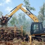 Excavator Hidraulik Cat 313D LGP Seri 2