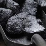 Harga Batubara Mulai Naik, Ada 40 Perusahaan Batubara Tutup