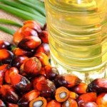 indonesia_palm_oil